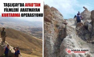 Ağrı Taşlıçay'da AFAD'tan Zorlu Keçi Kurtarma Operasyonu