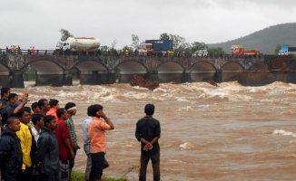 Sel Felaketi Vuran Hindistan'da Yılan Dehşeti Artıyor!