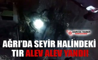Ağrı'da Seyir Halinde Olan TIR Alev Alev Yandı!