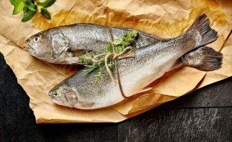 Balığı Böyle Seçenler Dikkat