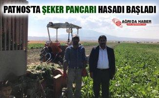 Ağrı Patnos'ta Şeker Pancarı Hasadı Başladı