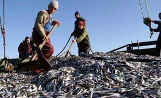 Balıkçılara Dev Destek Tam 8 Milyon...