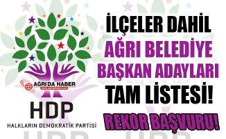 HDP Ağrı Belediye Başkan Aday Adayları İsimleriyle Tam Liste - 2019