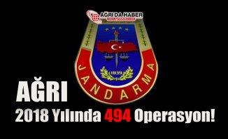 Ağrı İl Jandarma 2018 Yılında 494 Operasyon düzenledi