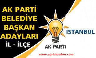 Ak Parti İstanbul Belediye Başkan Adayları İl ve İlçeler Tam Liste