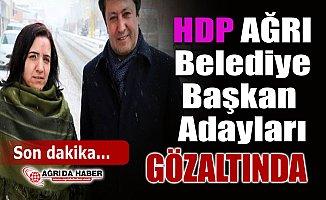 HDP Ağrı Belediye Eş Başkan Adaylarıyla Birlikte 55 Gözaltı