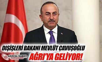 Dışişleri Bakanı Mevlüt Çavuşoğlu Ağrı'ya Geliyor
