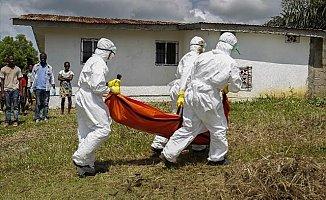 Ebola'ya 8 ayda rekor kurban