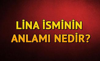 Lina İsminin Anlamı Nedir? Lina Ne Demek?