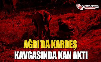 Ağrı'da Kardeş Kavgasında Kan Aktı