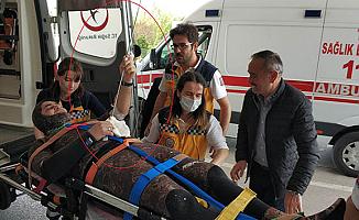 Karnın'da Zıpkın ile Hastaneye Gitti