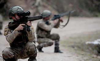 Van'da Mehmetçik 2 Teröristi Daha Öldürdü