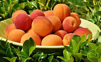 Yaz Aylarının Meyvesi Kayısı'nın Vücudumuza 4 faydası