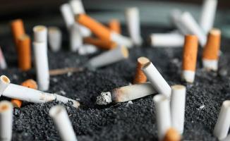 DSÖ Açıkladı: Tütünle Mücadelede Türkiye Birinci Sırada