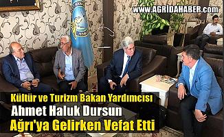 Kültür ve Turizm Bakan Yardımcısı Ahmet Haluk Dursun Ağrı yolunda vefat etti