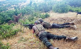 Bitlis'te Hava Operasyonu: Çok Sayıda terörist öldürüldü