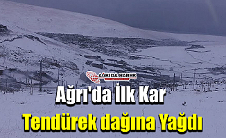 Ağrı'da İlk Kar Tendürek dağına Yağdı