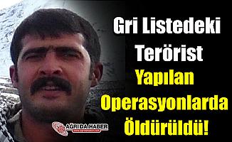 Gri Listede Aranan Terörist Yapılan Operasyonlarda Öldürüldü!