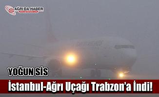 İstanbul-Ağrı Uçağı Sis Nedeniyle Trabzon'a İndi!