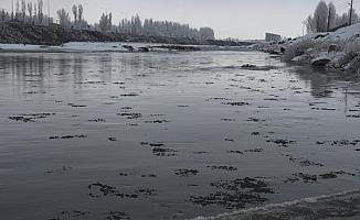 Ağrı Murat Nehri Soğuktan Dondu!