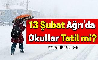 13 Şubat Ağrı'da Okullar Tatil mi?