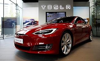 Tesla 92 Hektar Alandaki Ağaçları Kesiyor
