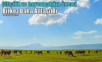 Çiftçilik ve hayvancılığın önemi birkez daha anlaşıldı