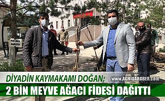Diyadin Kaymakamı Hasan Doğan, vatandaşlara 2 bin meyve ağacı dağıttı