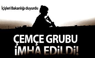 İçişleri Bakanlığı; PKK'nın Çemçe Grubu İmha Edildi