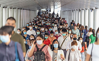 Dünya Sağlık Örgütü'nden Domuz Gribi Açıklaması