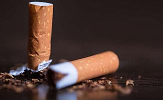 Türkiye 2019 yılında Sigaraya ne kadar harcadı?