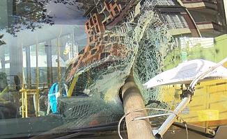 Otobüsün Ön Camından İçeriye Direk Girdi
