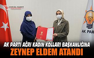 Zeynep Eldem Ak Parti Ağrı Kadın kolları Başkanılığına atandı