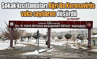 Sokak kısıtlamaları Ağrı'da Koronavirüs vaka sayılarını düşürdü