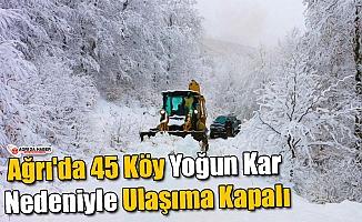 Ağrı'da 45 Köy Kar Nedeniyle Ulaşıma Kapalı