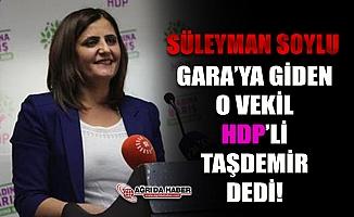 Gara'ya giden HDP Ağrı Milletvekili Dirayet Taşdemir Çıktı!