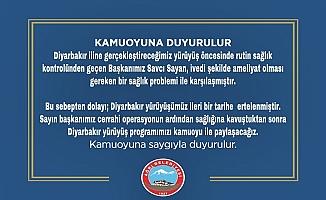Diyarbakır Annelerine destek yürüyüşü ertelendi