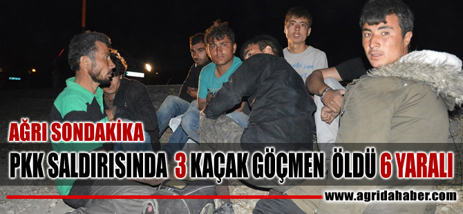 Ağrı Haber: PKK Minibüse Açtığı Ateşte: 3 Ölü, 6 kişi ise yaralandı