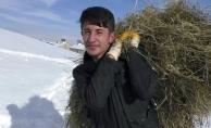 Ağrı'da Kışla Birlikte Gelen İlginç Ot Taşıma Yöntemi