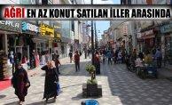 Ağrı Türkiye'nin En az Konut Satılan Şehirlerinden biri oldu