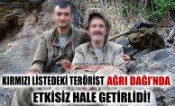 Kırmızı Listedeki Terörist Ağrı Dağı'nda Etkisiz Hale Getirildi