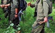 Tsk Açıkladı : 5 Terörist Öldürüldü 2'side Terörist Teslim Oldu