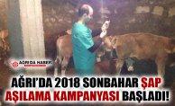 Ağrı'da 2018 Sonbahar Şap Aşılama Kampanyası Başladı
