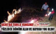 Ağrı'da Tarla Yangını! Yüzlerce Dönüm ve Canlı Türü Yok Oldu!