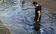 Sulama Kanalında Kaybolan Gençten Acı Haber
