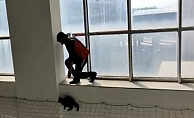 Ağrı'da Kedi Kurtarma Operasyonu Yapıldı