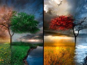 40 saniyede 4 mevsim
